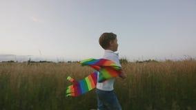 Pequeño muchacho que juega con la cometa en el campo en la puesta del sol metrajes