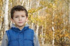 Pequeño muchacho sonriente en bosque del otoño Fotos de archivo libres de regalías