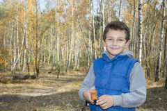 Pequeño muchacho sonriente en bosque del otoño Imagenes de archivo