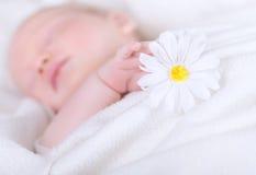 Pequeño niño dormido Foto de archivo