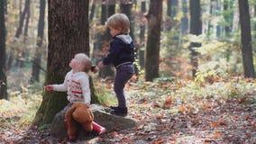 Pequeño niño feliz, bebé que ríe y que juega en el otoño en el paseo de la naturaleza al aire libre almacen de metraje de vídeo