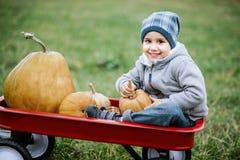 Pequeño niño pequeño feliz en remiendo de la calabaza en día frío del otoño, con muchas calabazas para Halloween o la acción de g Fotos de archivo libres de regalías