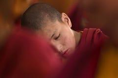 Pequeño niño joven que medita con los ojos cerrados en el puja regular Foto de archivo