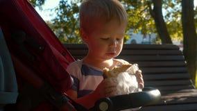 Pequeño niño que localiza en un cochecito y que come el bollo almacen de video