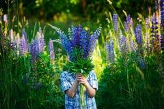 Pequeño niño que sostiene un ramo de campo de flores violeta de los lupines imagenes de archivo