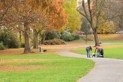 Pequeño parque Foto de archivo