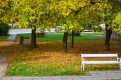 Pequeño parque cubierto con las hojas de otoño Fotos de archivo libres de regalías