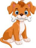 Pequeño perro lindo que muerde el hueso aislado en el fondo blanco libre illustration