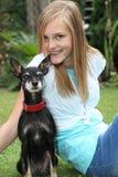 Pequeño perro orgulloso del pinscher miniatura Fotografía de archivo libre de regalías
