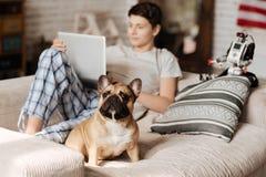 Pequeño perro serio que se sienta delante de su amo Fotos de archivo