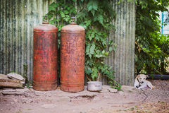 Pequeño perro sin hogar Imagen de archivo libre de regalías