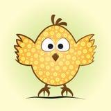 Pequeño pollo cómico en una forma del huevo Polluelo divertido con una flor Imágenes de archivo libres de regalías