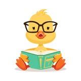 Pequeño polluelo amarillo del pato en los vidrios que se sientan y el libro de lectura, ejemplo lindo del vector del carácter del ilustración del vector