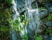 Pequeño primer de la cascada Foto de archivo