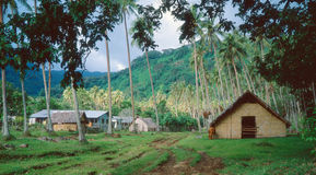 Pequeño pueblo Vanuatu del peticost Foto de archivo libre de regalías
