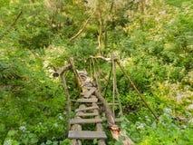 Pequeño puente de madera en el bosque Imagen de archivo libre de regalías