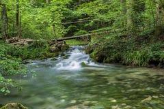 Pequeño puente de madera sobre el río de Beusnita en el bosque Imagenes de archivo