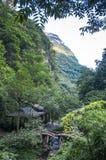 Pequeño puente en bosque fotos de archivo libres de regalías