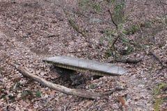 Pequeño puente en el bosque Foto de archivo