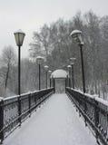 Pequeño puente en un parque nevado Imágenes de archivo libres de regalías