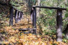 Pequeño puente hermoso en el parque en otoño fotos de archivo libres de regalías