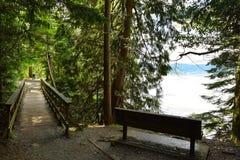 Pequeño puente a través de una cala y árboles cerca del océano Imagenes de archivo