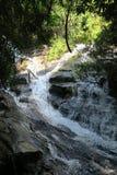 Pequeño río agradable y claro Fotos de archivo