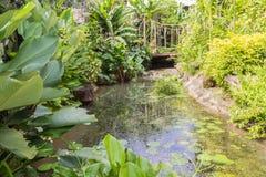 Pequeño río artificial en jardín Fotografía de archivo