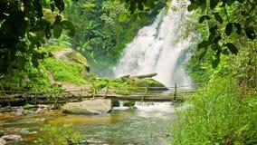 Pequeño río con el puente de la cascada y del bambú en el bosque Chiang Mai, Tailandia metrajes