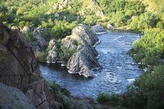 Pequeño río de la montaña Paisaje con la corriente que fluye entre las rocas Agua en montañas Río en niebla fotos de archivo