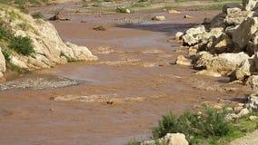 Pequeño río de ondulación y banco lleno de grava metrajes