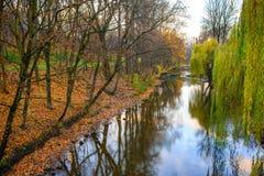 Pequeño río en bosque del otoño Fotografía de archivo libre de regalías