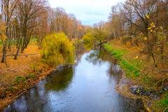 Pequeño río en bosque del otoño Imagenes de archivo