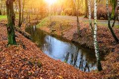 Pequeño río en bosque del otoño Foto de archivo libre de regalías