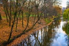 Pequeño río en bosque del otoño Imagen de archivo libre de regalías