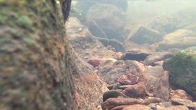 Pequeño río en el invierno, vídeo con la inmersión debajo del agua metrajes