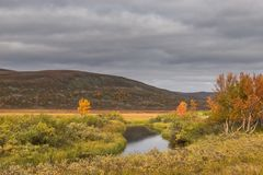 Pequeño río en la meseta de Finnmark imagen de archivo libre de regalías