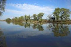 Pequeño río en primavera temprana Foto de archivo