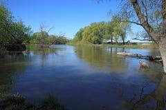 Pequeño río en primavera temprana Imágenes de archivo libres de regalías