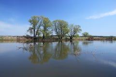 Pequeño río en primavera temprana Imagen de archivo libre de regalías