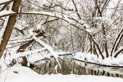 Pequeño río en un bosque nevado foto de archivo