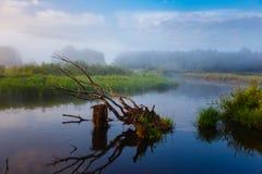 Pequeño río que curva prados verdes en la salida del sol Paisaje del VERANO fotos de archivo