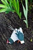 Pequeño rastrillo de jardín con los guantes Imagen de archivo libre de regalías