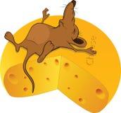 Pequeño ratón el dormir y el pedazo grande de queso. Foto de archivo libre de regalías