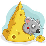 Pequeño ratón hambriento Fotografía de archivo