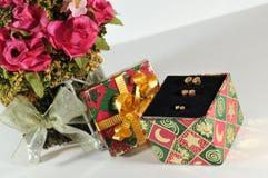 Pequeño rectángulo de regalo con los pendientes Foto de archivo libre de regalías