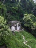 Pequeño templo maya en selva densa en Palenque Fotografía de archivo