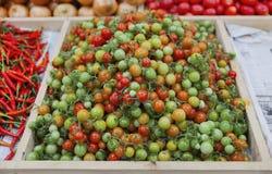 Pequeño tomate Foto de archivo libre de regalías
