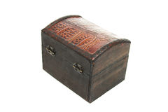 Pequeño tronco Imagen de archivo libre de regalías