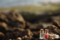 Pequeños buques de cristal con las tapas del corcho, llenadas de aceite aromático, de sal y de inflorescencias fragantes en las r Imagen de archivo